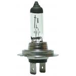 Фото лампа hella standart 8gh 007 157-121 h7 px26d (12v 55w) лампы автомобильные